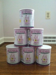 Tower of Donated Cans